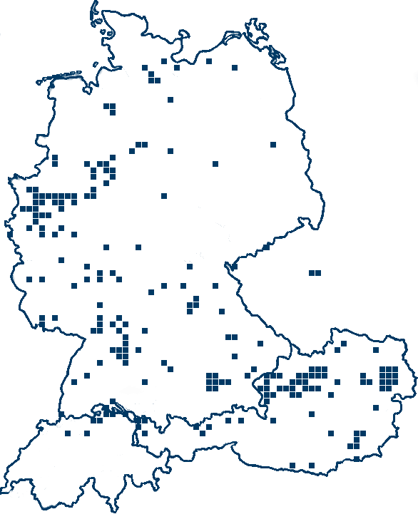 Supplier in DACH (Germany, Austria and Switzerland) area